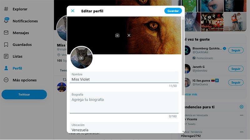 editar los datos de perfil de twitter