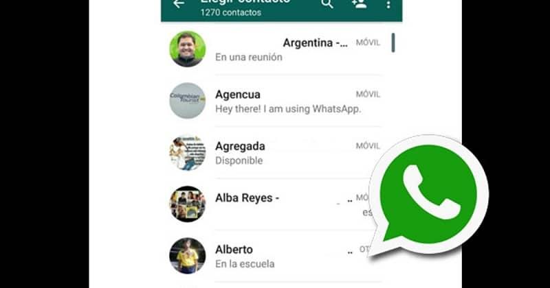contactos agregados en whatsapp