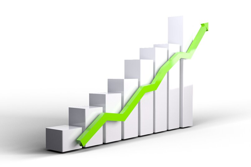 view visitor statistics