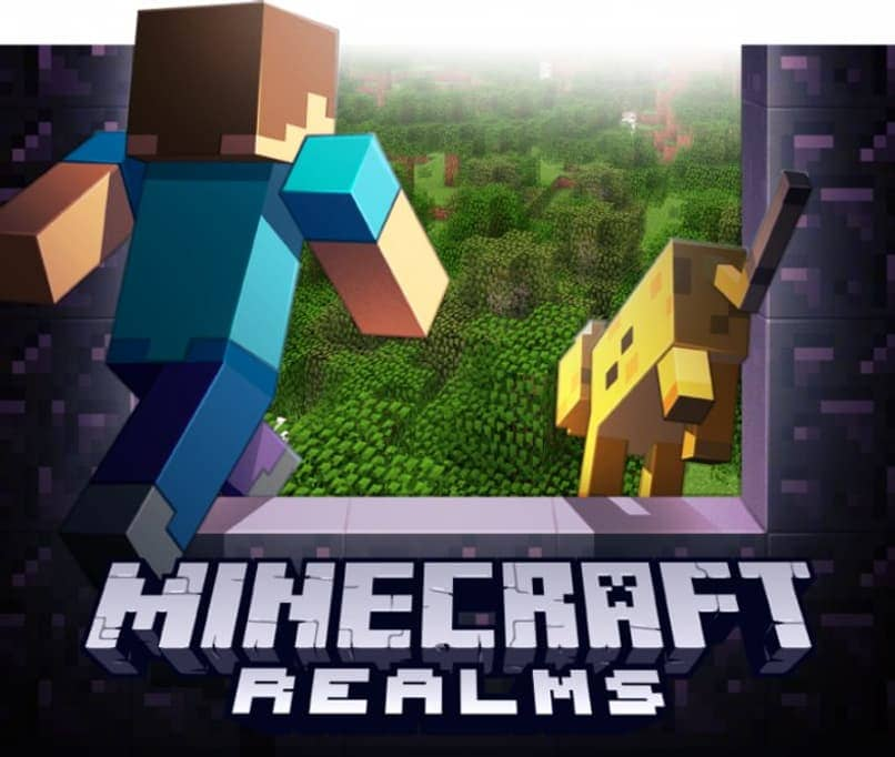 paid servers for Minecraft realms