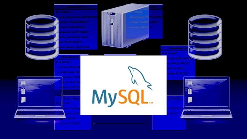 mysql manager in Ubuntu