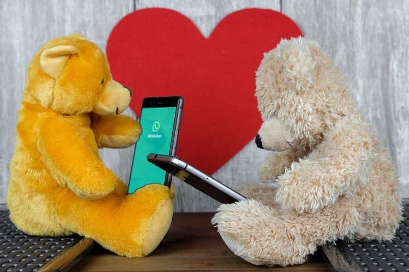 osos de felpa usando whatsapp