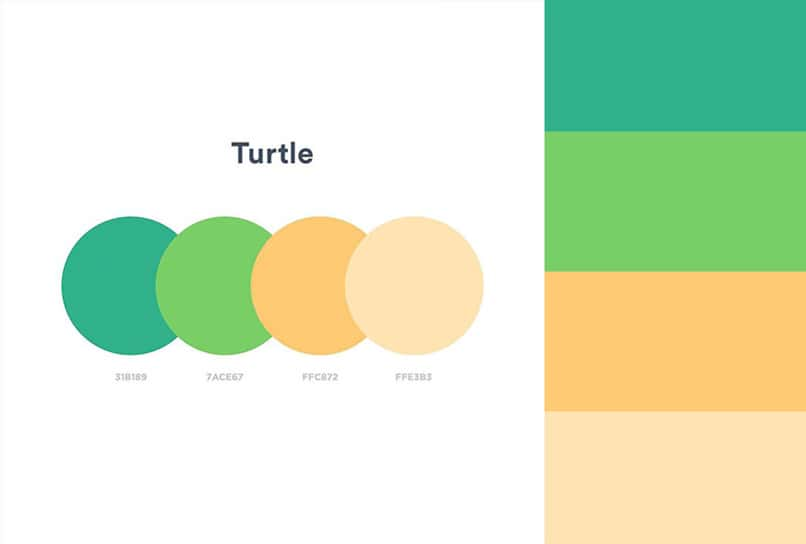 colors in different shades