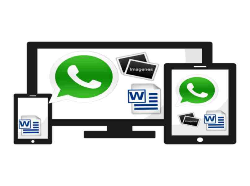 download the file from WhatsApp or web